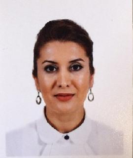 S. Maryam Sadeghi, Speaker at World Nanotechnology Conference